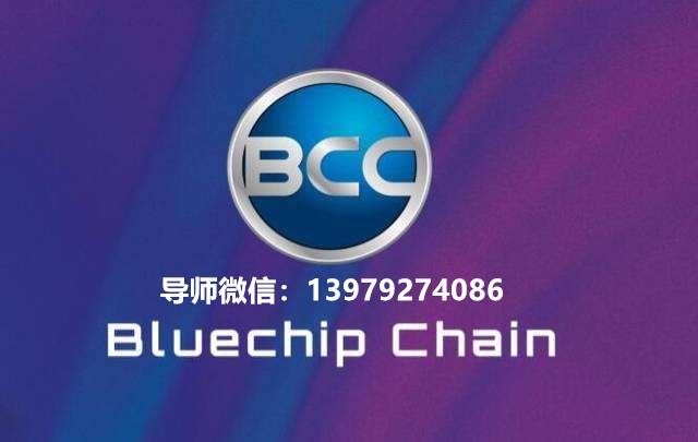 蓝筹链基金会风险大吗,BCCO蓝筹币能买吗